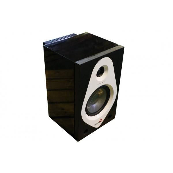 Профессиональный активный студийный монитор BIEMA G08M